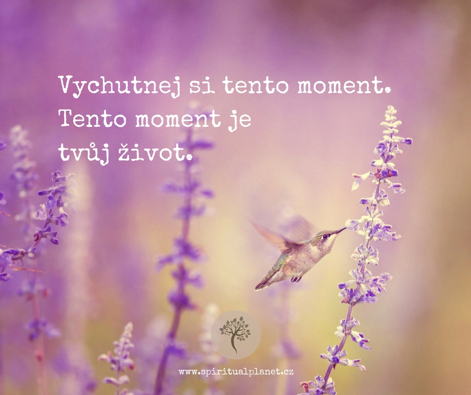 vychutnej-si-tento-moment-tento-moment-je-tvym-zivotem