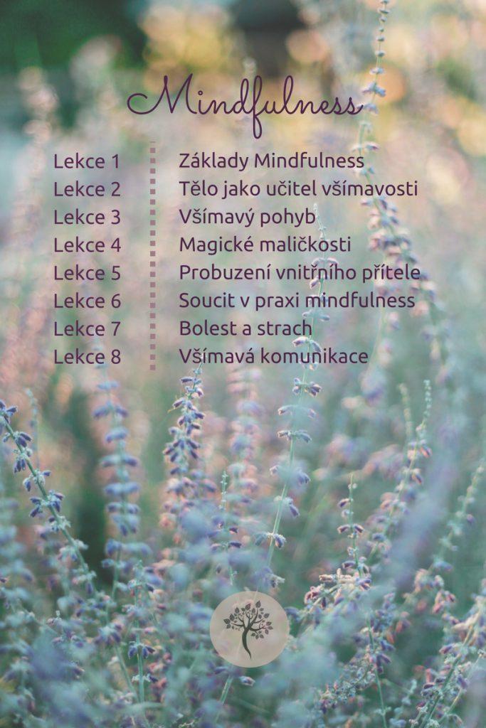 plagat-mindfulness