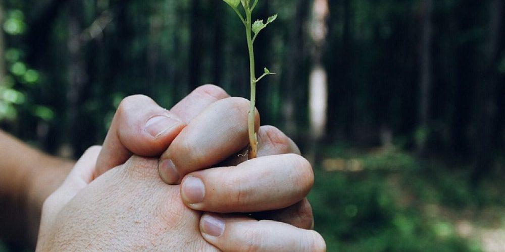 Proč propojujeme lektory, terapeuty a podnikatele na jednom místě?