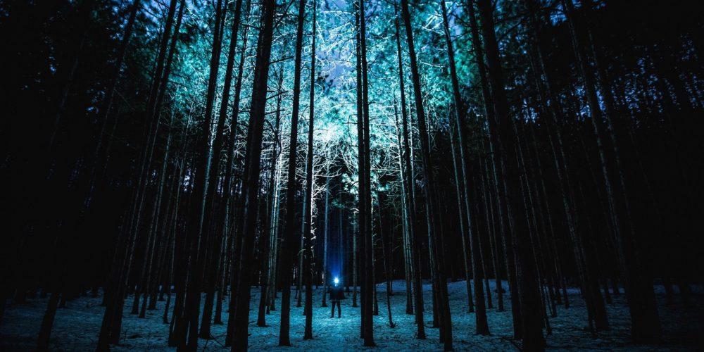 Revoluce vědomí – jak může vaše vnitřní transformace změnit vnější svět?