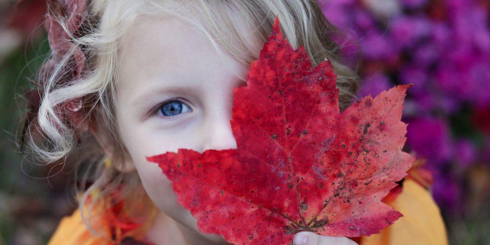 Mindfulness v českých školách: jak přispívá všímavá výchova klepším výsledkům dětí ve škole i mimo ni?